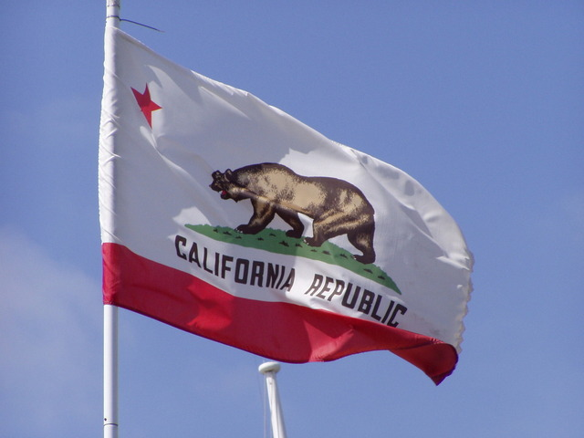 Image of the California State Flag