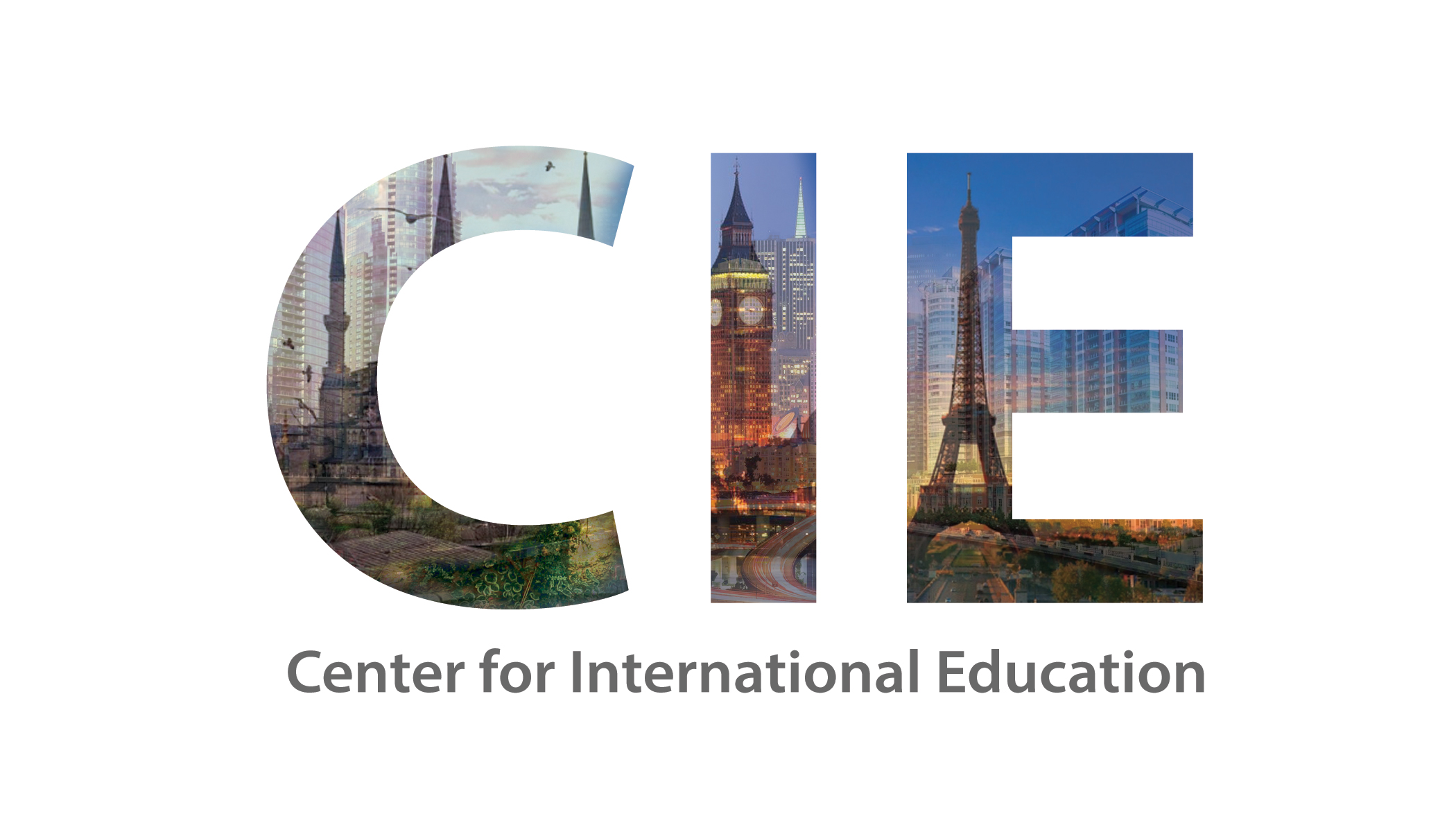 Center for International Education